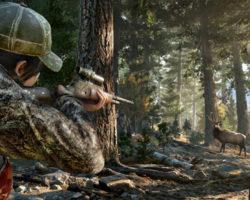 5 лучших игр про охоту на животных на ПК