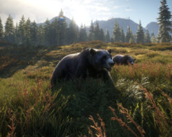 СкриншотыtheHunter: Call of the Wild
