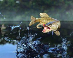 Игры про рыбалку на ПК